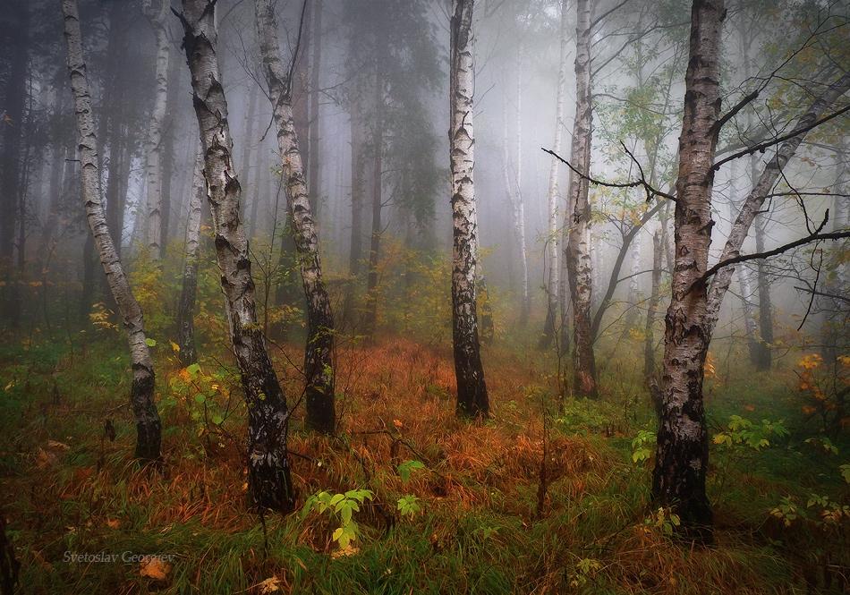 Още ми е есенно :D