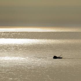 Сред море от злато