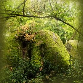 Мистиката на скалното светилище