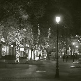 Коледни светлини