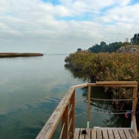 Риболов при Кулата Форос