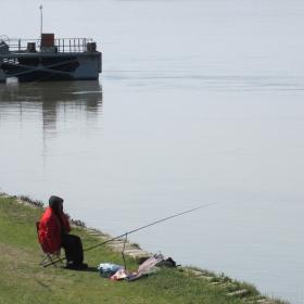 За дунавска риба...