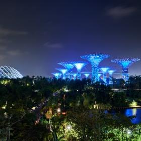 Marina Bay Gardens at night