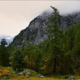 Есен в Алпите