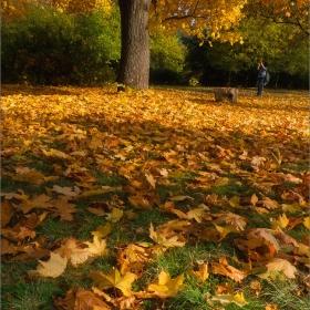 Есенни спомени
