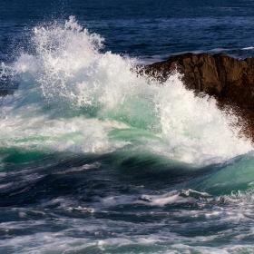 Вълната