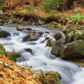 река Добринищка