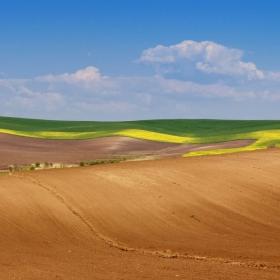 Родна земя