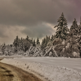 Спомен от едно зимно пътуване!