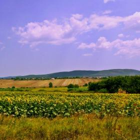 Благодатна земя