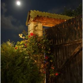 В очакване на синята луна - един ден преди пълнолуние
