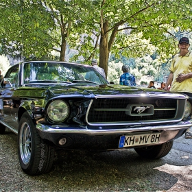 Ford Mustang Coupe 298  V8