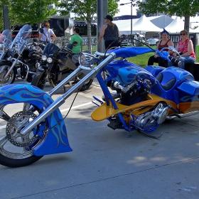 Custom Bikes Show
