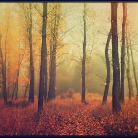 Есенност
