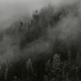 Есен + мъгла? - Любимото ми!