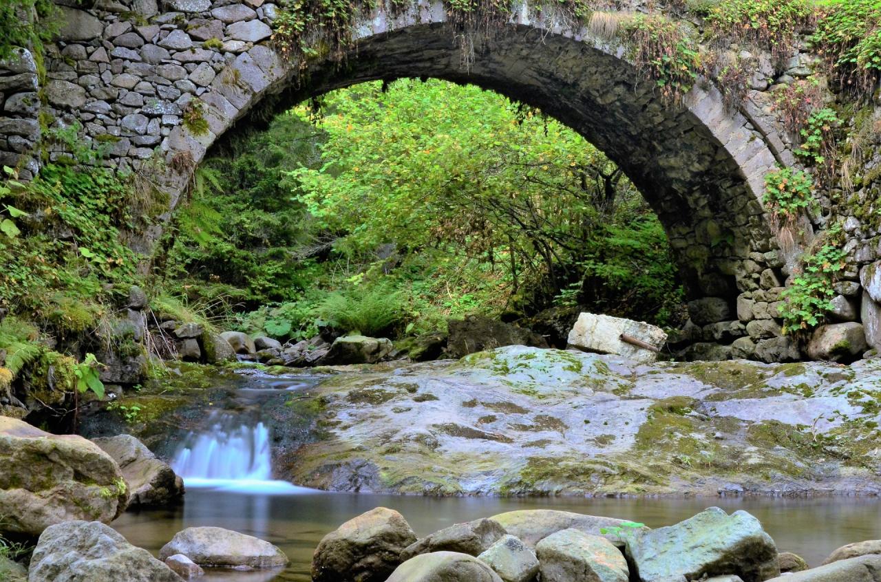 Под моста