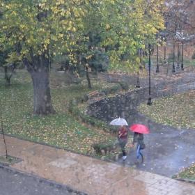 Дъжд...