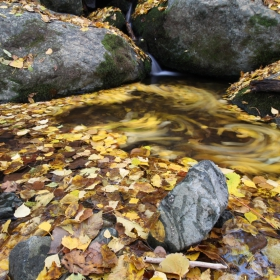 Есенни води