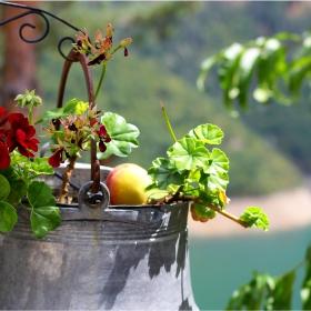 Поглед към бакърчето с цветя