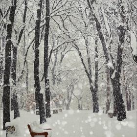 София-Нарния: един сняг разстояние