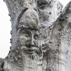 Норвегия. Флам Лицето на Викинга!