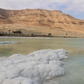 Весела Коледа от Мъртво море