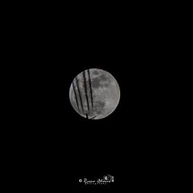 Полет към Луната