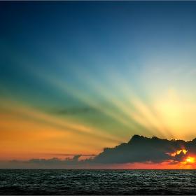 цветовете на слънцето