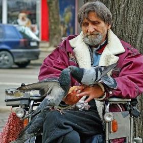 Човекът с гълъбите