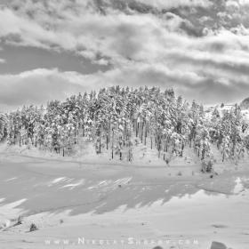 Слънчев зимен ден в Родопите