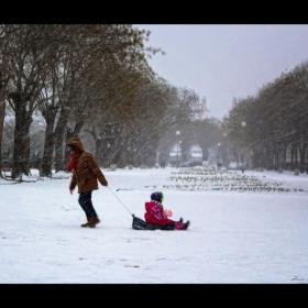 Зимни дни