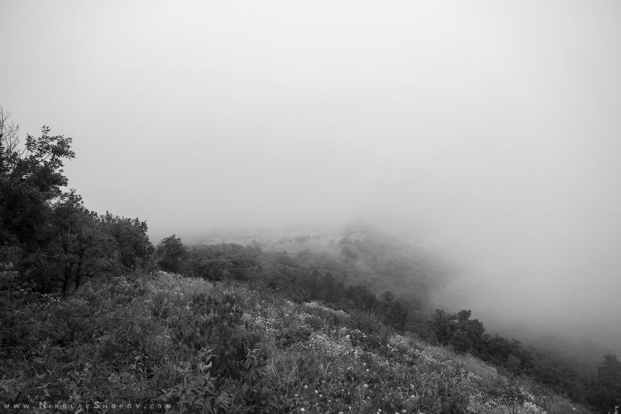 Мъгливи хълмове