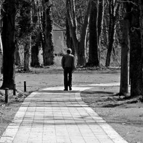 По алеята на живота