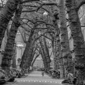 Някъде в Амстердам