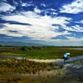 Dreamland...