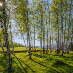 Зелена пролет