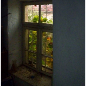 Прозорец в миналото