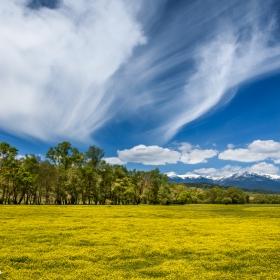 Памукови облаци