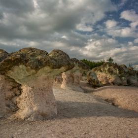 Каменните гъби!