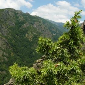 Старопланински поглед