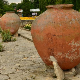 Ботан.градина-Балчик