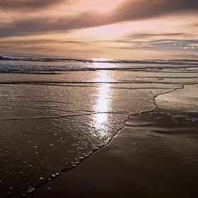Тих океански отлив