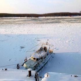 Тази зима на Дунава