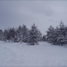 бял пейзаж