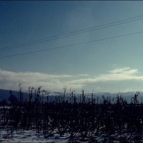 хоризонт