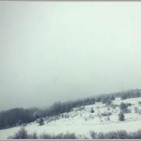 мъгла в полето