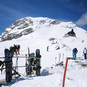 Алпийски хоризонти - 1