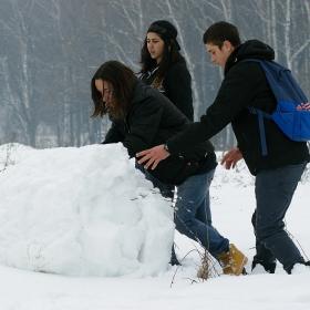 Снежни забавления