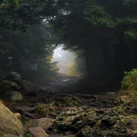 Витошка пътека