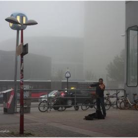 Звуци в мъглата